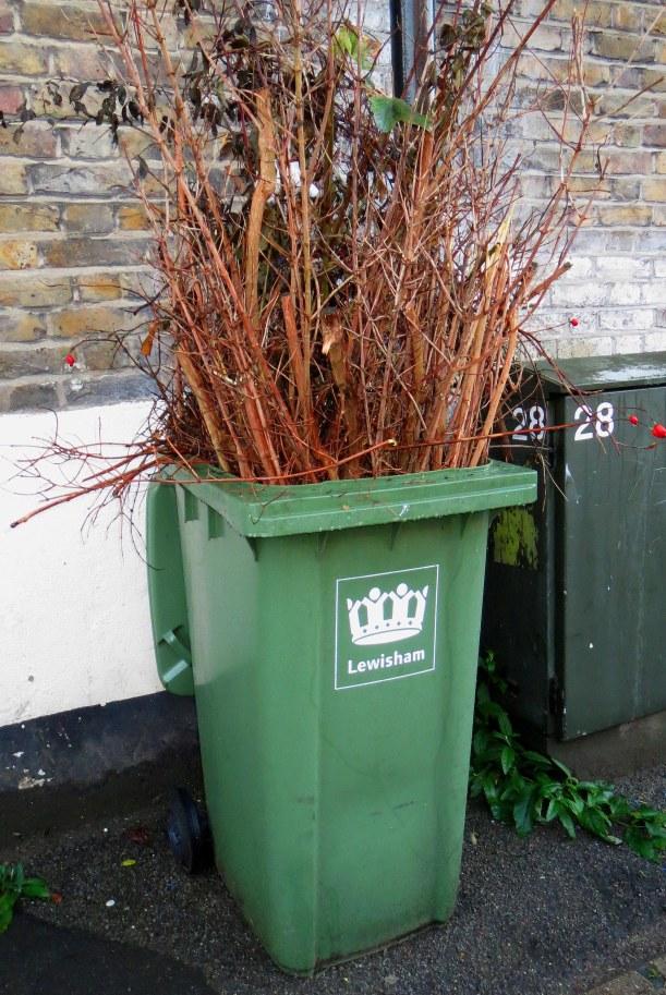 Contaminated bin 1